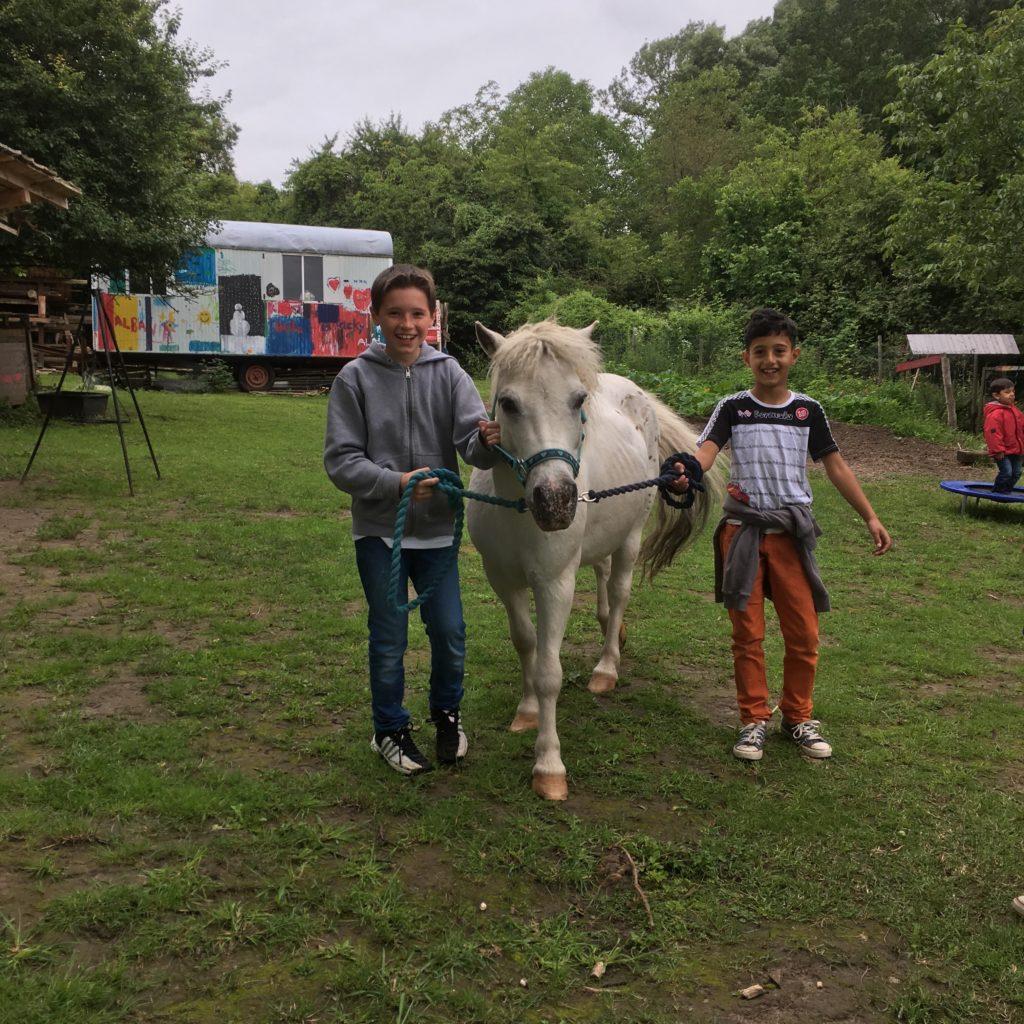 Farmtag mit Ponys